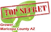 Confidential - Maricopa County Arizona's picture