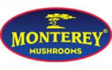 Monterey Mushrooms's picture