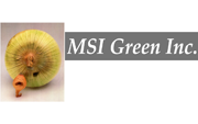 MSI Green's picture